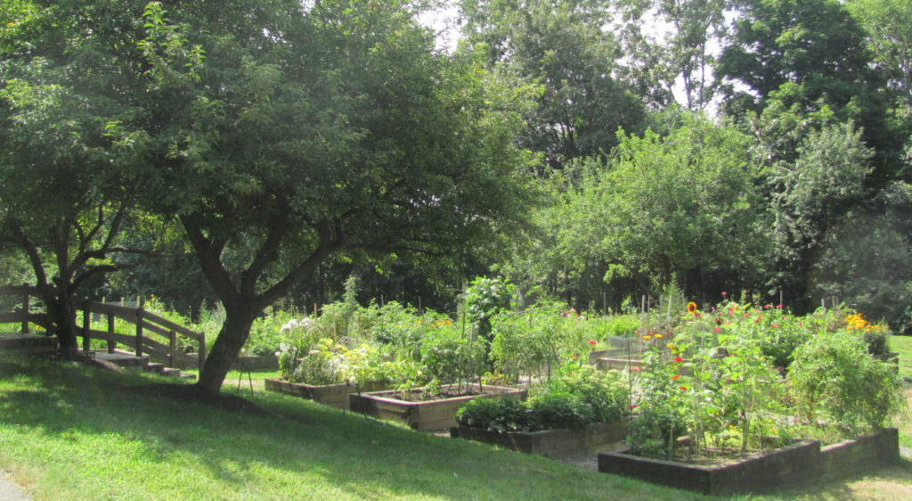New Pond Village Assisted Living/Community Gardens, Walpole, MA